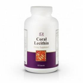 CoralLecithin(91650)m (1)